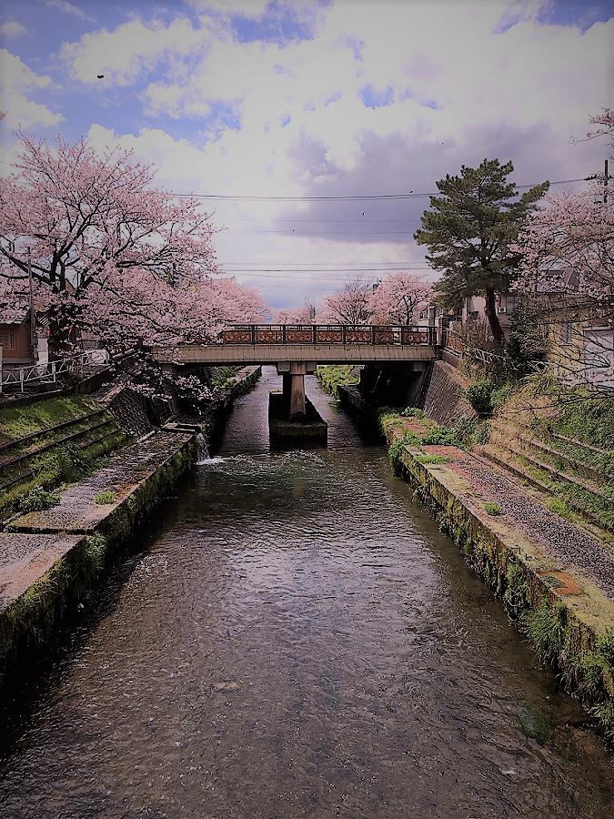 tanakamiyaimage